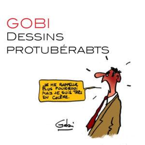 Gobi001